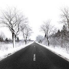 Winter road by Nicolas Van Weegen - Landscapes Weather ( ardennes, nobody, wood, frost, travel, beauty, road, landscape, haute, hautes fagnes, nature, tree, cold, ice, snow, weather, covered, beautiful, fagnes, white, christmas, snowy, forest, belgium, rural, country, winter, season, background, outdoor,  )