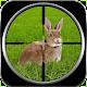 US Rabbit Killer Assassin