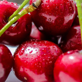 Cherries by Tony Ripacandida - Food & Drink Fruits & Vegetables ( red, fresh fruit, red cherries, summer fruit, stalk, wet, tasty, water droplets, sweet,  )