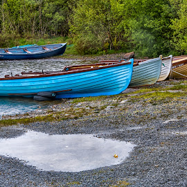 Boats docked on the pond by Carol Ward - Transportation Boats ( water, waterscape, boats, transportation, pond )