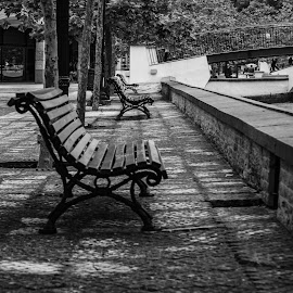 Senta-te e espera by Carlos Costa - Black & White Buildings & Architecture ( aveiro, bench, city, street, portugal, river, walk )