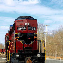 Train by Eurico David - Transportation Trains