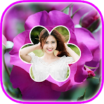 Rose Flower Frame Apk