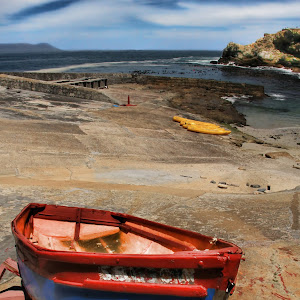 Rowboat 1 y.jpg