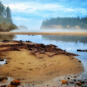 Sunset Bay, Oregon by Jeannie Matteson - Landscapes Waterscapes