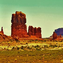 Marine Rock by Shane Lusk - Landscapes Deserts ( moab, desert, utah, marines, rocks )