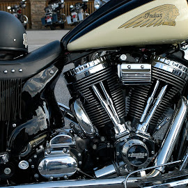 New Indian by Bill Coan - Transportation Motorcycles ( rally, v-twin, chrome, indian, motorcycle, transportation )