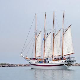 Chicago Sailboat by Dawn Hoehn Hagler - Transportation Boats ( lake michigan, lake, transportation, chicago, sailboat, boat,  )