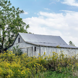 Barn On The Hill by T Sco - Buildings & Architecture Other Exteriors ( farm, wildflowers, hill, building, nature, barn, trees, farming )
