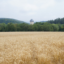 Tower in a countryside by Luboš Zámiš - Landscapes Travel