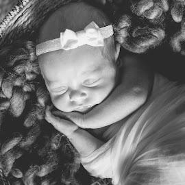 new born by May Evelene Bester - Babies & Children Babies ( baby girl, newborn shoot, baby, newborns, newborn, newborn photography )