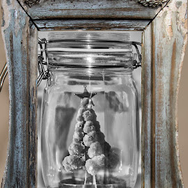 Christmas in a bottle  by Simon Hall - Digital Art Things