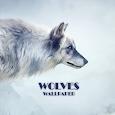 Wolves Animal Wallpaper