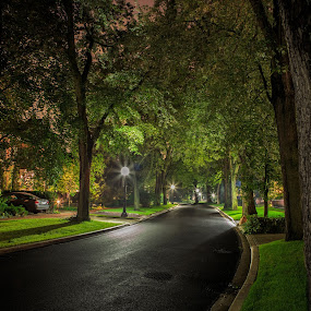 Residential Night by Ralph Sobanski - City,  Street & Park  Neighborhoods ( urban, canada, residential, toronto, beautiful, neighborhood, long exposure, night, quiet, pretty, neighbourhood, city )