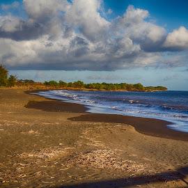 Waimea Beach by Brandon Beadel - Landscapes Beaches ( point, sand, kauai, trees, ocean, beach, black sand, hawaii )