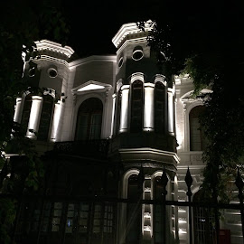 Șuțu Palace by Cosmin Tomescu - Instagram & Mobile iPhone ( bucharest, building, arhitecture, night, historical, palace, night shot )