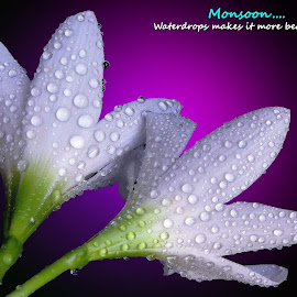 Monsoon...  by Asif Bora - Typography Quotes & Sentences