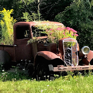 Truck_Rt46_2017_kc.jpg