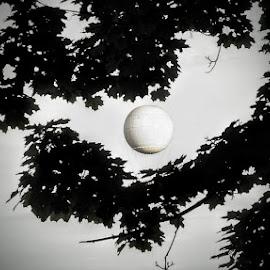 Full moon by Cristian Raifura - City,  Street & Park  Amusement Parks