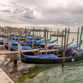 Venice by Vladimir Vocelka - Transportation Boats ( venice, pier, gondolas, turism, italy )