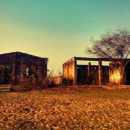 The abandoned  by Prince Frankenstein - Instagram & Mobile Android ( field, houses, tree, afternoon, abandoned )
