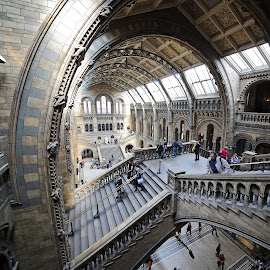 Light at NHM by Almas Bavcic - Buildings & Architecture Other Interior