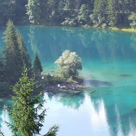 by Serguei Ouklonski - Landscapes Waterscapes ( water, park, forest )