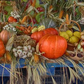 by Graça Cortez - Food & Drink Fruits & Vegetables (  )