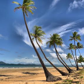 Mission Beach by Kinga Urban - Landscapes Beaches ( nature, places, beach, landscape, tropics,  )