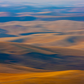 by Gale Perry - Landscapes Prairies, Meadows & Fields ( palouse, browns )