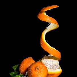 Orange twist  by Rene Timbang - Food & Drink Fruits & Vegetables ( #orange #artwork #stilllife #creativity #fruits #fruitsphotography )