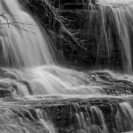 Hooker Falls by Jonathan Wheeler - Black & White Landscapes ( nc mountains, hooker falls, waterfalls, dupont state forest, little river, spring )
