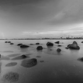 Calm at the beach by Valliappan Chellappan - Landscapes Waterscapes ( calm, black and white, waterscape, peace, beach )