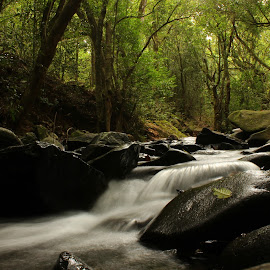 by Nitin Chauhan - Landscapes Waterscapes