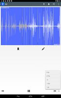 Screenshot of ClearRecord Pro