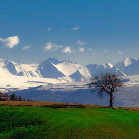 The Sentinel of the Blue Mountains by Mauro Fini - Landscapes Mountains & Hills ( camerino, monti sibillini, serrapetrona )