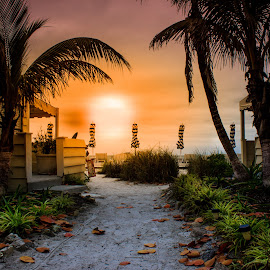 Anna Maria Island Florida by Juan Polanco - Landscapes Sunsets & Sunrises ( cabana, colors, florida, sunset, beautiful, view, beach, leaves )