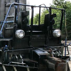 by Cal Brown - Transportation Trains ( adirondak, detail, transport, locomotive, train, travel photography,  )