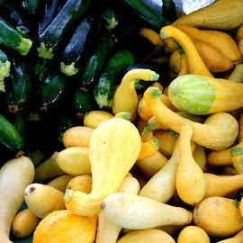 green squash yellow squash by Julia Pegler - Food & Drink Fruits & Vegetables ( zucchini, bounty, farmers market, vegetables, squash )