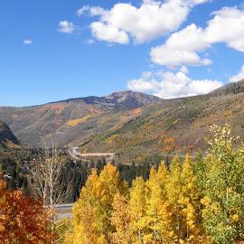 Bike Colorado by Michelle Bergeson - City,  Street & Park  Vistas ( mountains, blue sky, fall, bike trail, scenic,  )
