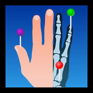 e-Anatomy For PC (Windows & MAC)