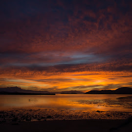 terra colorida by Wado Chicchan - Landscapes Sunsets & Sunrises ( paraty, rj, brasil\, sunrise, terra nova )