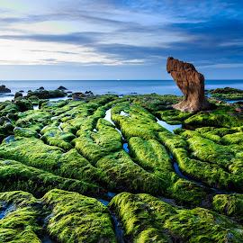 Cổ Thạch - Vietnam by Phạm Công Tiến - Landscapes Waterscapes ( vienam, bình thuận, waterscape, landscape )