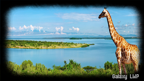 Giraffe Wallpaper - screenshot