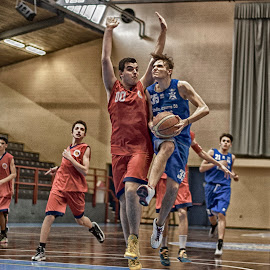 STELLA AZZURRA 17 by Nando Scalise - Sports & Fitness Basketball