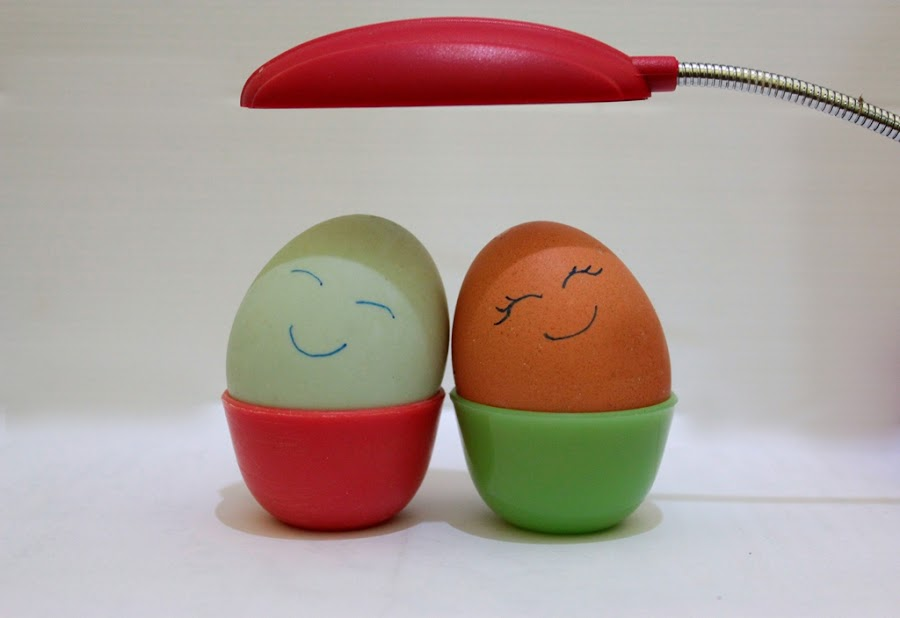 cute egg by Redhina Aulia - Artistic Objects Other Objects ( egg, cute )