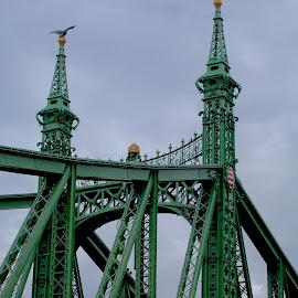 by Louis Costabel - Buildings & Architecture Bridges & Suspended Structures