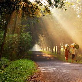 On the Way  by Dadan Supardan - City,  Street & Park  Vistas