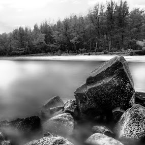 Tungku Beach by Mohamad Sa'at Haji Mokim - Landscapes Beaches ( sky, white, trees, pwcbwlandscapes, beach, landscape, black )