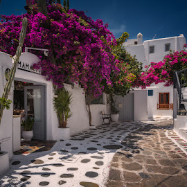 Down the streets of Mykonos by Krasimir Lazarov - City,  Street & Park  Street Scenes ( greece, island, street, buildings, mykonos, architecture )